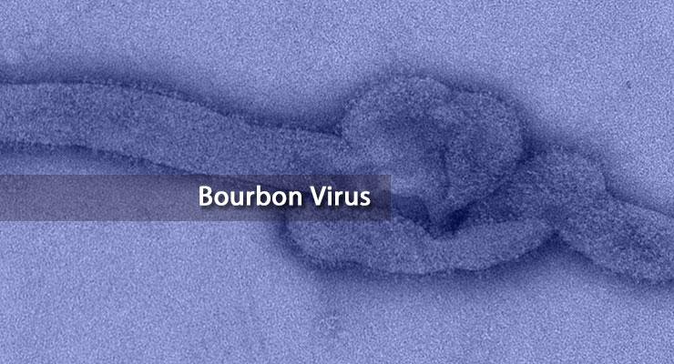 bourbon_virus